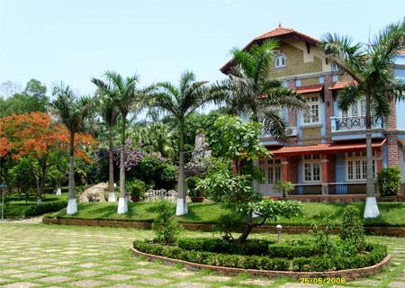 Cay Phong Thuy Phong Thủy Cho Cây Trồng Trong