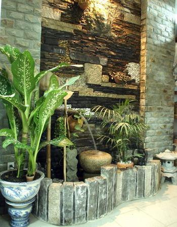 Trồng cây xanh trong nhà như thế nào là đủ?