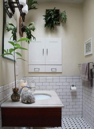 Cách sử dụng cây xanh trong phòng tắm